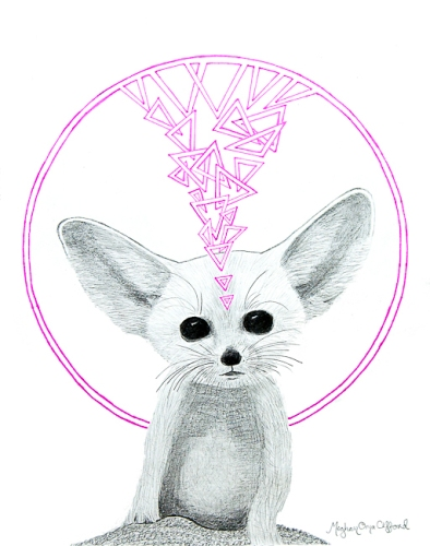 Fennec Fox by Meghan Oona Clifford web