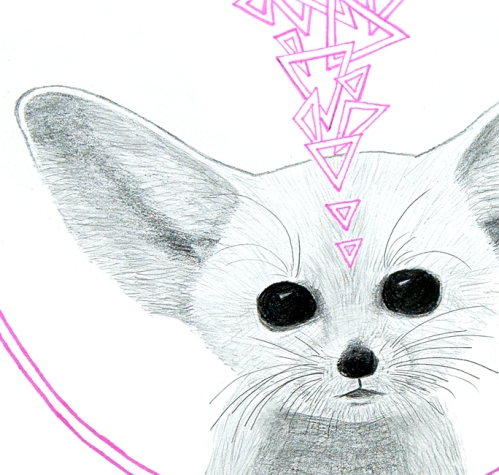 Fennec Fox detail 1 by Meghan Oona Clifford