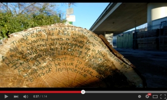 street intervention, poetry art, tree art, eco art