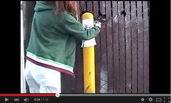 eco art, street intervention art, guerrilla street art, meghan oona clifford art, video art san francisco