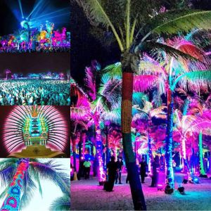 phish, phish riviera maya, barcelo phish, show show art, kuroda phish lights, meghan oona clifford, party animal art
